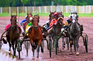 Harness Racing in the UK