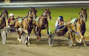 Harness Racing in Australia