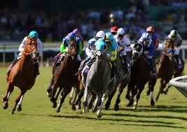 Breeder's Cup Turf Race