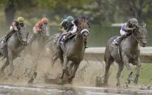 Breeder's Cup in the Mud