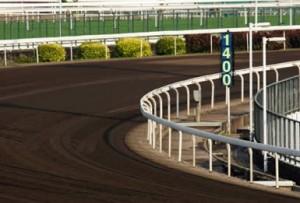Horse Racetracks