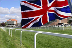 Racing Betting System in the UK