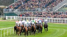 Cheltenham Festival Horse Racing Event