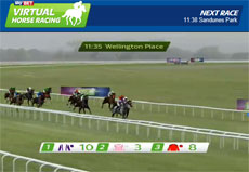 SkyBet Virtual Horse Racing
